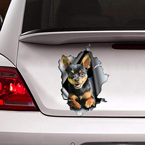 hua car Decal, Torn Metal Decal, Chihuahua car Decal Vinyl Sticker for Cars, Windows, Walls, Fridge, Toilet and More - 6 Inch ()