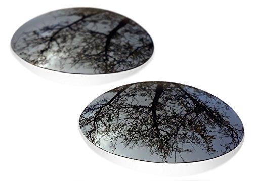 sunglasses restorer Kompatibel Ersatzgläser für Oakley E Wire 1.0 (Polarisierte Black Iridium Linsen)