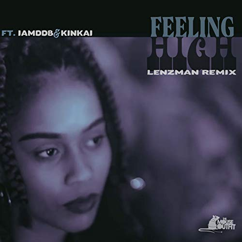 Feeling High (Lenzman Remix) [...