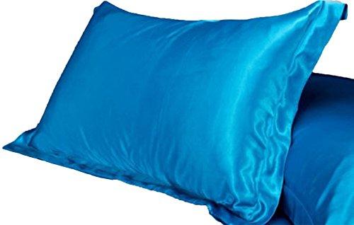 ACEFAST INC 2PC New Queen/Standard Seide ~ Y Satin Kissen Fall mehrere Farben (blau) (Acefast Inc)