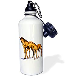 3dRose wb_40586_1 Mother and Child Horses Sports Water Bottle, 21 oz, White