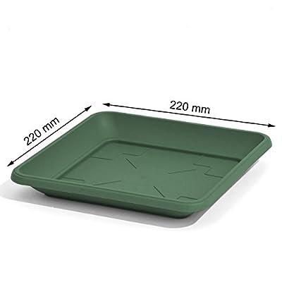 Quadratischer Untersetzer für Blumenkübel Pflanzkübel grün 22 x 22 cm Kunststoff eckig von Prosperplast auf Du und dein Garten
