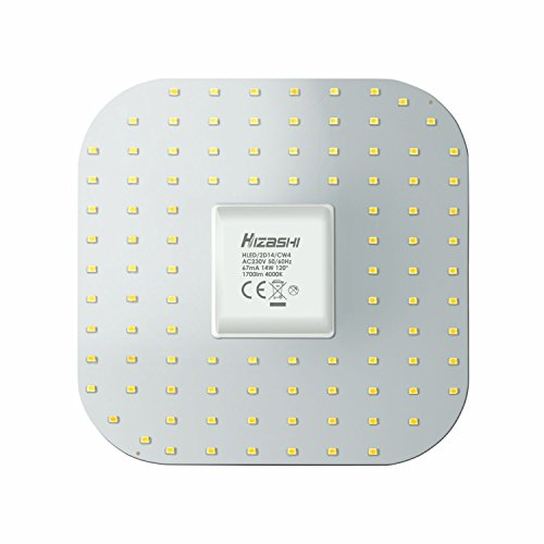hizashi 14 W 2D LED GR10q Leuchtmittel - 4000 K Cool Weiß - 1750 Lumen, Cool White 4000k, GR10q, 14.0W (Cool White Led-chip)