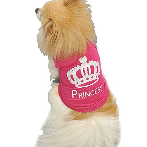 Kostüm Princess Hunde Für - EVRYLON Kostüm Hund mit Aufdruck Princess Prinzessin Hund Verkleidung Halloween Cosplay Tolles Geschenk für Weihnachten oder Geburtstag