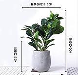 Telihome Home Dekoration Simulation von grünen Pflanzen Bügeleisen Blume Rack Bonsai, Leaf Leaf von Taro