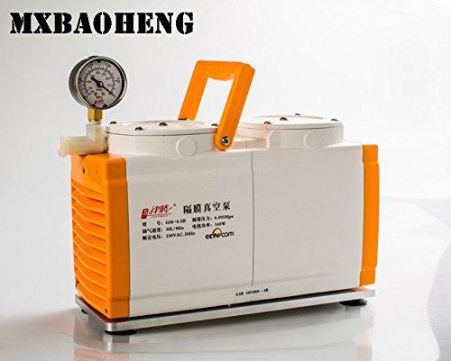 AC 220V/110V, 50/60Hz 160W Membran Vakuum Pumpe Öl frei Dual Head 30l/min gm-0.50b Antiseptische Ac-vakuum-pumpe