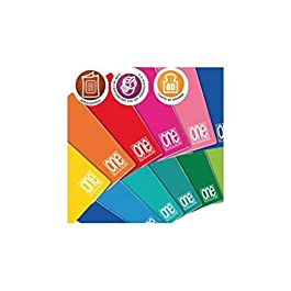 Blasetti Maxi One Color, Quaderno Formato A4, Rigatura 10, Quadretti 1 cm per 1° Elementare, Carta 80g/mq, Pacco da 10…