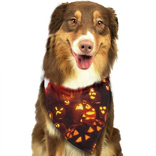 s Halloween Kürbis einstellbar Hundehalsband Katze Schal Welpen Bandans Pet Zubehör ()
