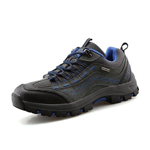 Homme Chaussure de Sport en Suédé Mesh Bas Outdoor Chaussures Loisir Bout Antiusure Chaussures de Randonnée Respirent