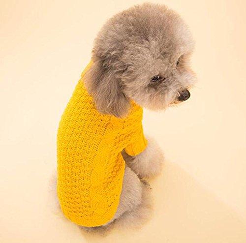 WSS autunno caldo e colore solido maglione di cotone maglia