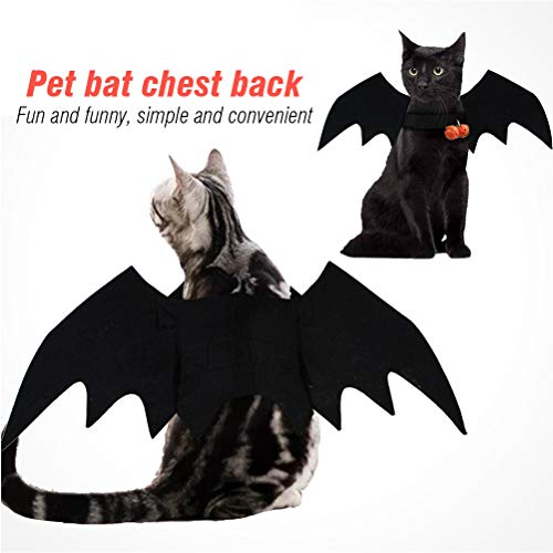 Katze Vampir Kostüm Für Menschen - Einsgut Fledermaus Flügel Kostüm für Kleine Haustiere Halloween Pet Dog Costume Vampire Wings Fancy Dress Outfit Bat Cats Dogs which