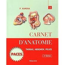 Carnet d'anatomie : Tome 3, Thorax, abdomen, pelvis