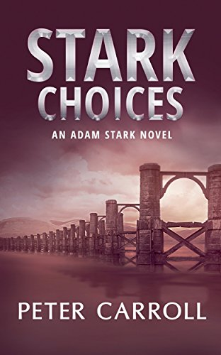Stark-Choices-An-Adam-Stark-Novel-Book-2