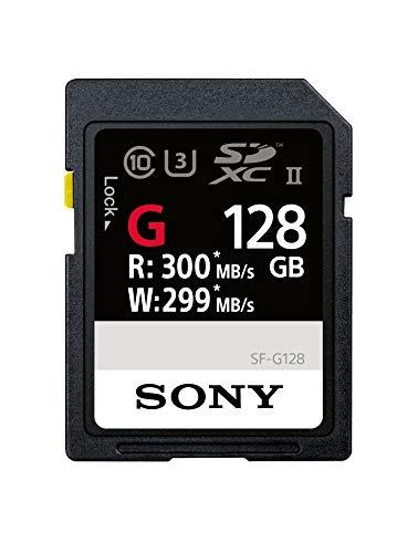 Sony sfg1g