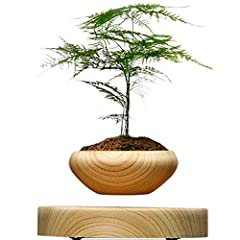 Idea Regalo - sportuli Pianta da Vaso Galleggiante Magnetica sospesa Hippie Round LED Levitating Indoor Zen Pot