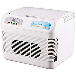 Portátil Mini frigorífico Refrigerador y Calentador Eléctrico TermoEléctricoa Eficiencia energética Nevera Hogar Hotel Oficina -A 12L