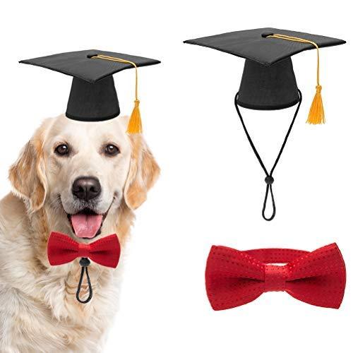 Kostüm Tag Des Sports Am Besten - QHorse Puppy Pet Hüte Hunde-Abschluss-Hut mit gelbem Tessel und Fliegenhalsband, für Hunde und Katzen, Kostüm-Zubehör Cute Cosplay Cartoon