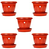#6: Gamla/Planter/Pot 8-inch (Pack of 5 Pots) (Red/Terracotta Colour Pot) with Bottom Plate/Tray (5 PC's) (Tray Colour Terracotta/red) for Garden Balcony Flowering Pot by Kraft Seeds