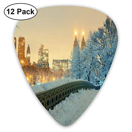 Guitar Picks - Abstract Art Colorful Designs,Central Park Winter Season With Skyscrapers And Snow Bow Bridge Manhattan New York,Unique Guitar Gift,For Bass Electric & Acoustic Guitars-12 Pack Camo Winter Parka