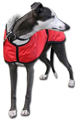 Whippet Walking Out Dog Coat. Water-resistant red microfiber and Cream Sherpa fleece lined (Small 18-21