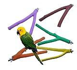 Scrubbing Sticks Macina Sticks Claw per Tutti i tipi di Pappagalli Bastoni di Legno per Uccelli 2 Formati Casualmente Colori (20cm)