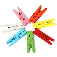 Pixnor Mini in Legno Craft mollette vestiti carta fotografica da appendere Primavera clip 2,5cm, confezione da 100 - Primavera Garland