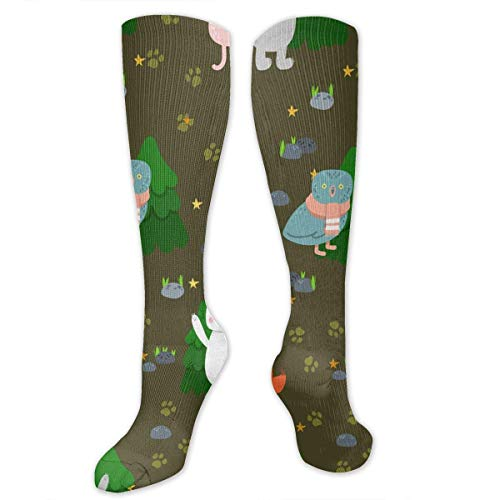 HTETRERW Knee High Socks Cute Cartoon Funny Animals Bea Bunny Fox Owl Knee High Compression Stockings Athletic Socks Personalized Gift Socks Men Women Teens Girls -