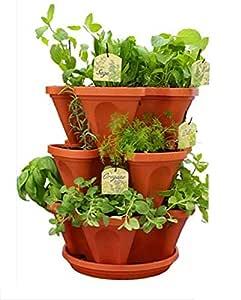 Vgreen Garden Store 3 Pot Brown Planter (3 Pot + 1 Tray)