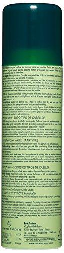 Rene Furterer Rene Furterer Naturia Dry Shampoo 3.2 Ounce