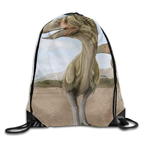ZHIZIQIU 3D Print Drawstring Bags Bulk, Prehistoric Birds Terror Bird Unisex Home Rucksack Shoulder Bag Sport Drawstring Backpack Bag Size: 4133cm (Princess Party-goody Bags)