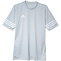 adidas Entrada 14 JSY, Camiseta para hombre, Gris (Silver/White), S, F50493