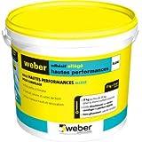 WEBER - Colle carrelage pâte Weber Adhésif allégé haute performance 5kg classe D2ET - 16000127