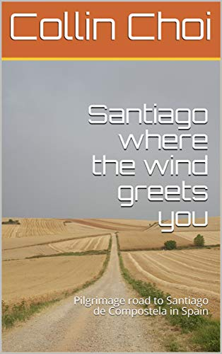 Santiago where the wind greets you: Pilgrimage road to Santiago de Compostela in Spain (English Edition)