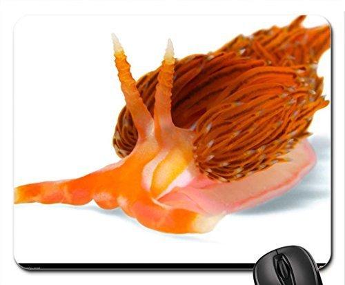 godiva-nudibranch-mouse-pad-mousepad