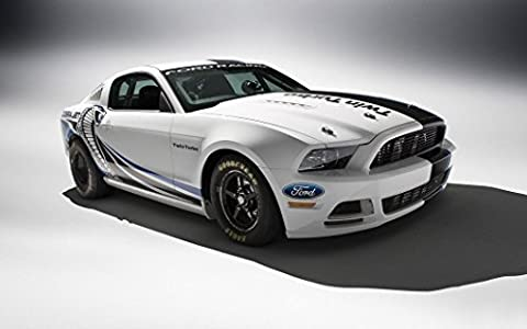 Ford Mustang Customized 22x14 inch Silk Print Poster Affiche de la Soie/WallPaper Great Gift