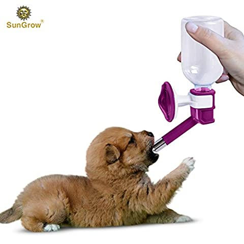 Pretty Purple Pet Water Dispenser Bottle by SunGrow - BPA free, Rust proof, Leak proof - Dripless stainless steel pipe - Keep puppies, cats, bunnies and other small animals hydrated: Easy to
