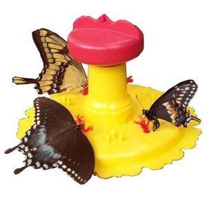 Songbird Essentials SE78200 papillon Feeder