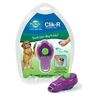 PetSafe Clik-R Training Tool, Obedience Aid, Clicker for Dogs 41XtSra94BL
