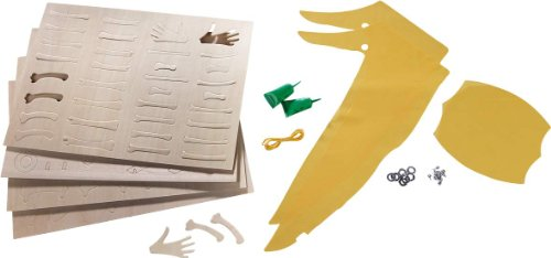 Terra-Kids-Flying-Dinosaur-Assembly-kit