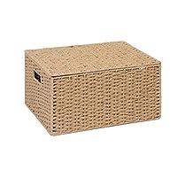 ARPAN Natural Paper Rope Storage Basket Box With Lid (Xlarge)