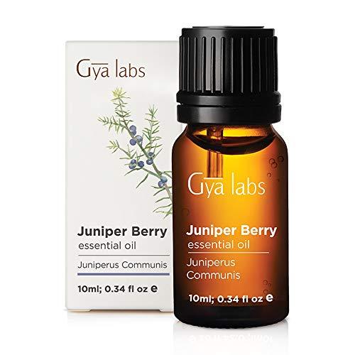 Gya Labs Ätherisches Öl Wacholderbeere, 100% rein, therapeutische Qualität für Aromatherapie-Diffusor, 10 ml -