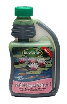 interpet-anti-fungus-bacteria-pond-treatment-250ml