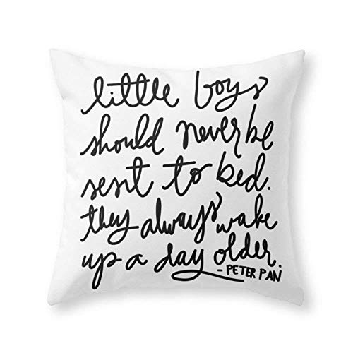 Not afraid Peter Pan Print by Aedriel Throw Pillow Indoor Cover (18