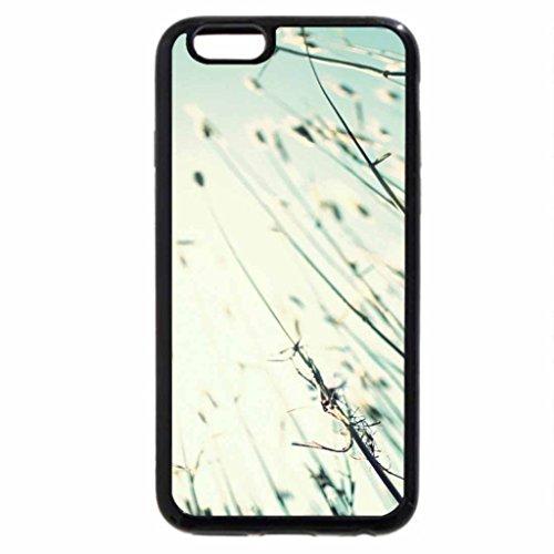 iPhone 6S / iPhone 6 Case (Black) Grass stems