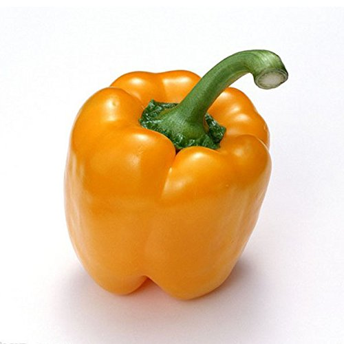 Promotion! 50pcs super Big Red Hot Pepper Seeds 100% Haute Qualité Paprika