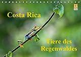 Costa Rica - Tiere des Regenwaldes (Tischkalender 2020 DIN A5 quer): Costa Rica, ein Einblick in die Tierwelt des Regenwaldes (Monatskalender, 14 Seiten ) (CALVENDO Tiere) -