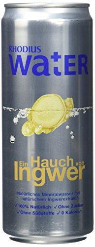 RHODIUS Water Ein Hauch von Ingwer, 12er Pack, EINWEG (12 x 330 ml)