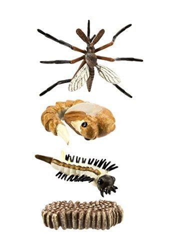 safari-ltd-safariology-life-cycle-of-a-mosquito-by-safari