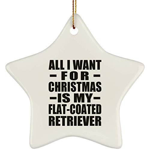 Designsify All I Want for Christmas is My Flat-Coated Retriever - Star Ornament White Stern Weihnachtsbaumschmuck aus Keramik Weihnachten - Geschenk zum Geburtstag Jahrestag -