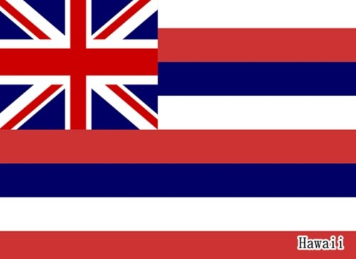 hawaii-flag-of-hawaii-guest-book-special-gifts-825x-6-diary-journal-notebook-100-pages
